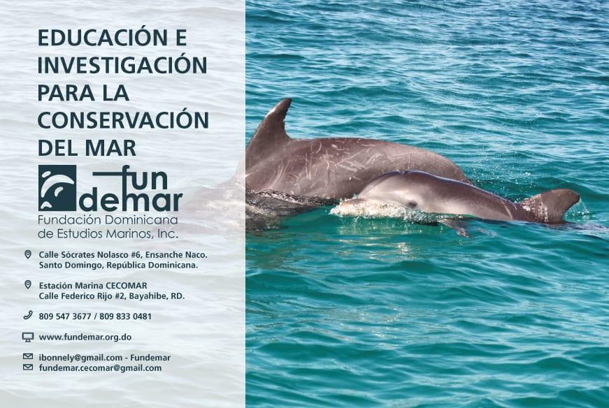 Anuncio-prensa-para-Fundemar-Fundación-Medioambiental-sin-ánimo-de-lucro-República-Dominicana-vida-acuática-delfines-1