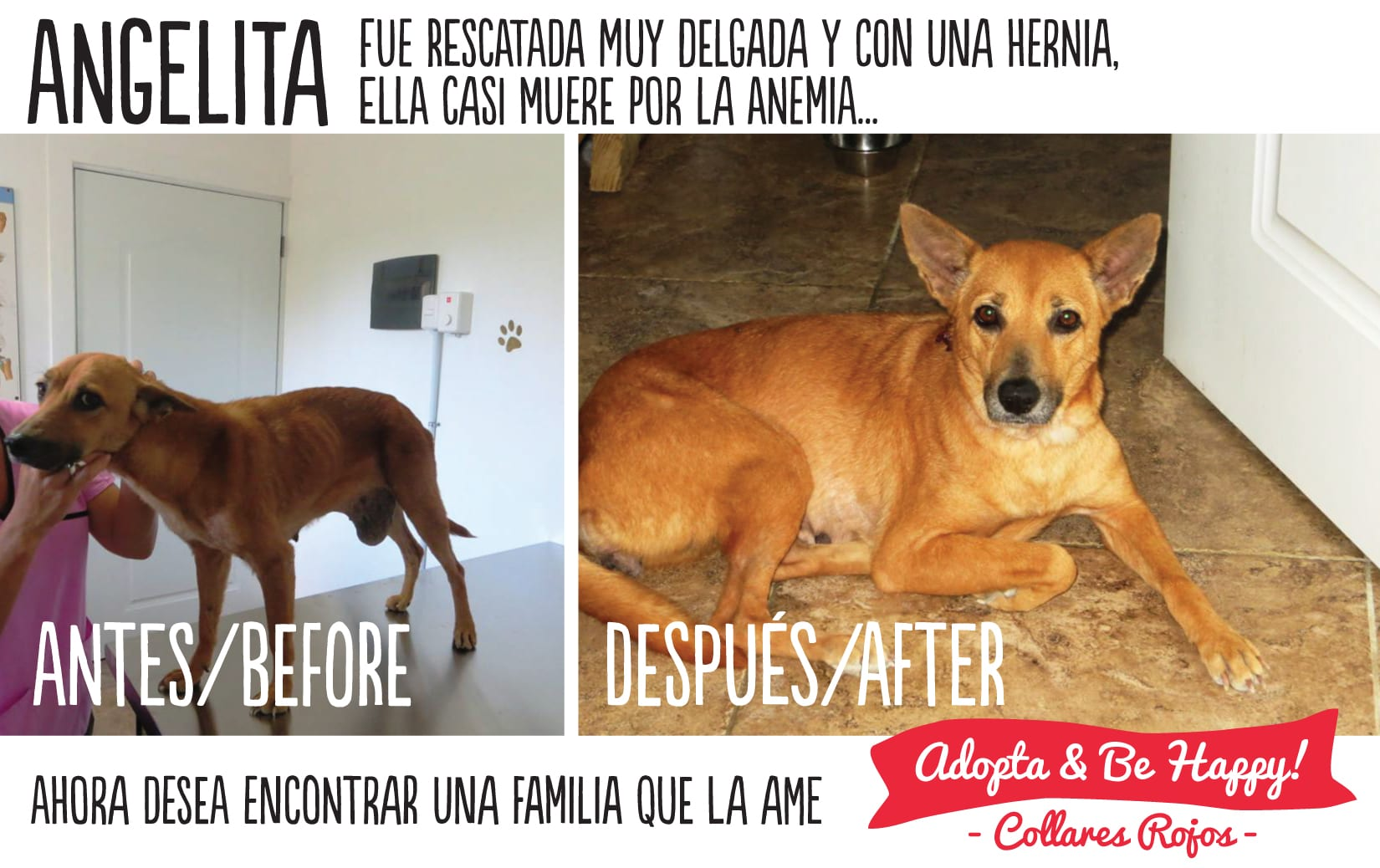 angelita-before-and-after