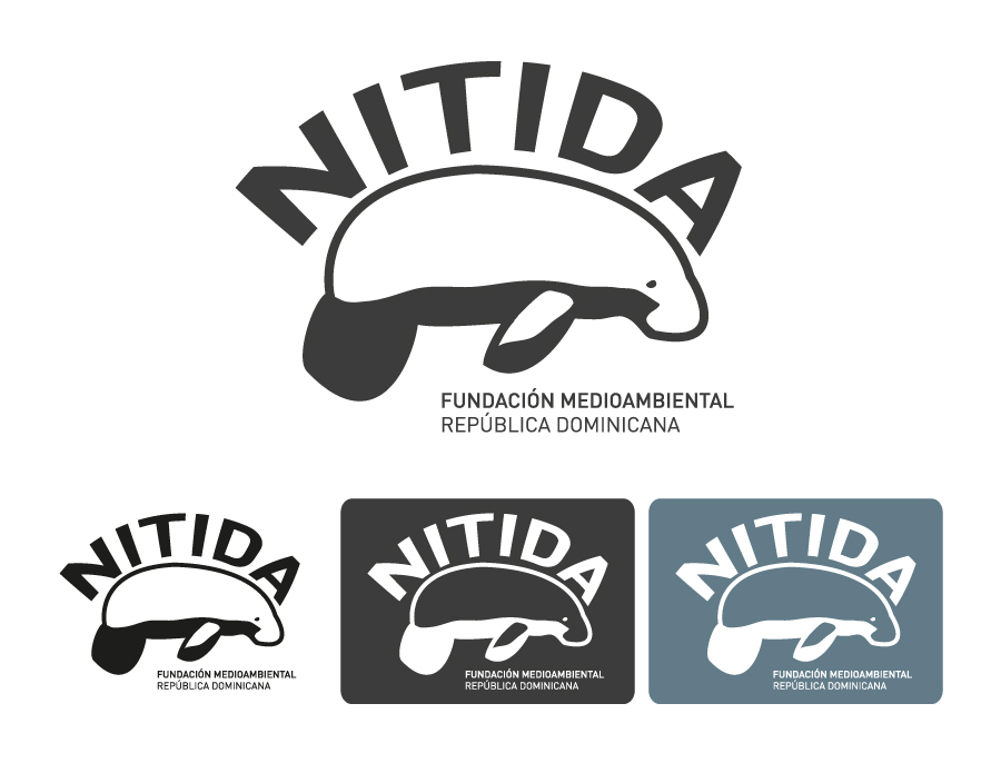 logo-variants-corporate-colors-grey-scale-identity-Nitida-Fundación-Medioambiental-non-profit-Dominican-Republic